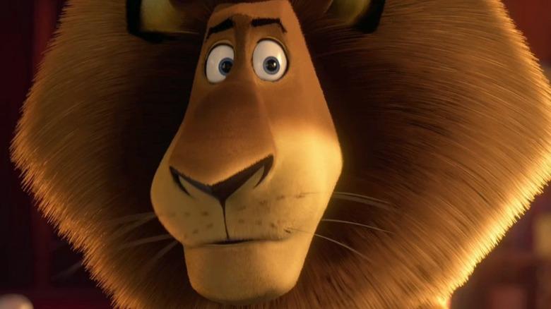 Madagascar Alex the lion in close-up