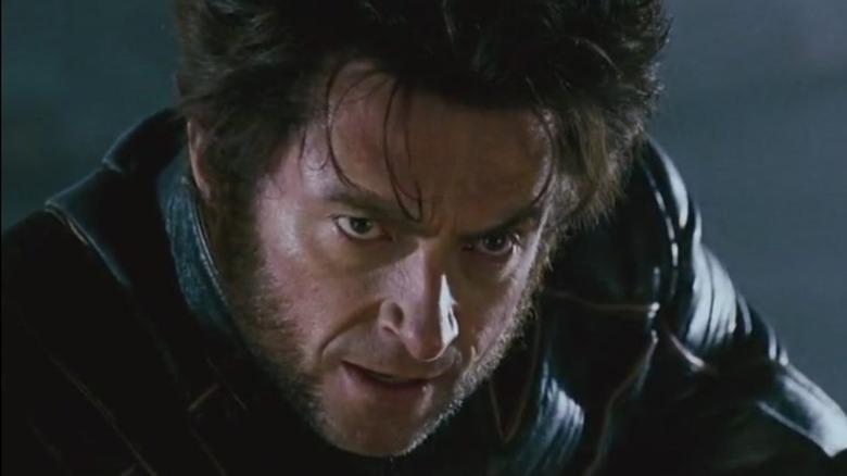 Wolverine head tilt down