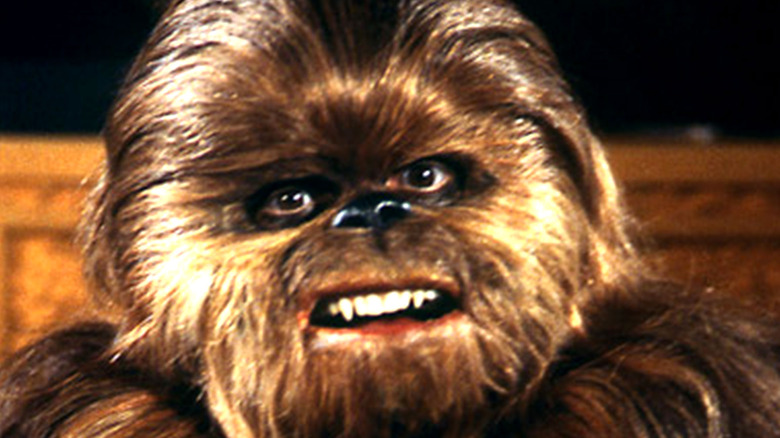 Lumpy the Wookiee on The Star Wars Holiday Special