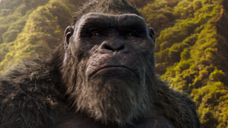 Kong in jungle