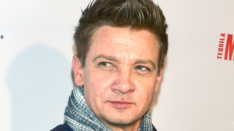 Renner poses at event