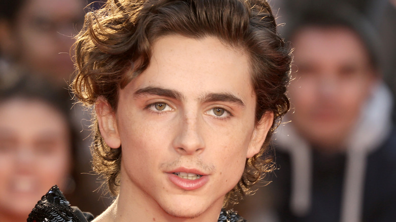 """Timothee Chalamet at """"The King"""" premiere"""