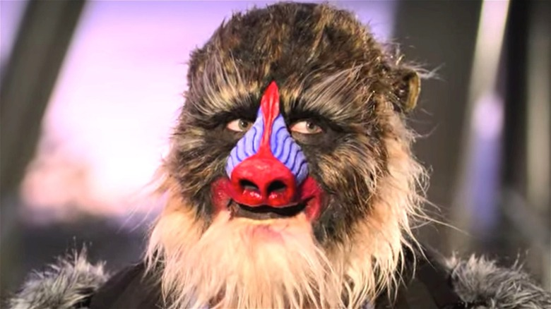 Bennett the Mandrill from Sexy Beasts