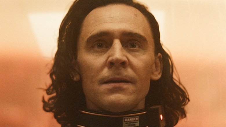 Loki with a shock collar around his neck