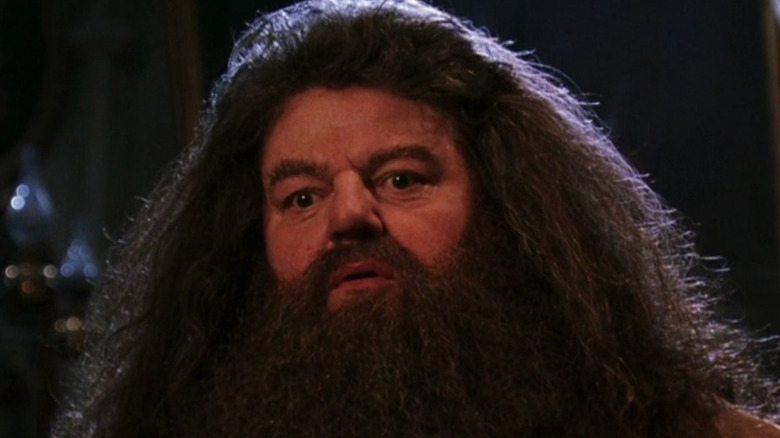 Robbie Coltrane as Hagrid in the Sorcerer's Stone