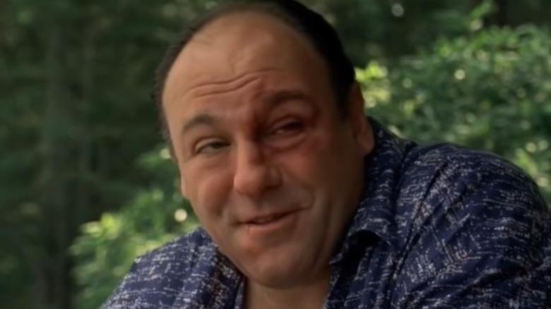 Tony Soprano smiling