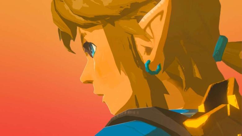 Link looking away