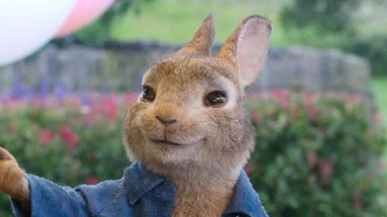 Peter Rabbit smiling balloons