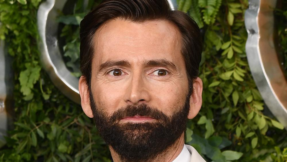 David Tennant with beard