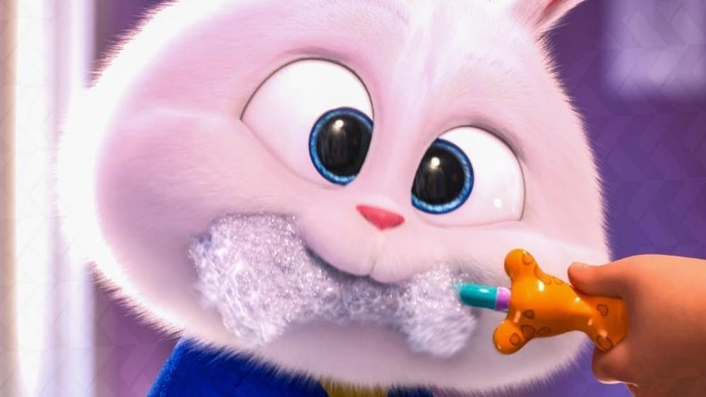 Snowball brushing teeth